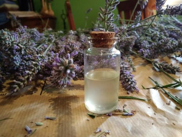 aceite esencial de lavandin destilado por nosotros