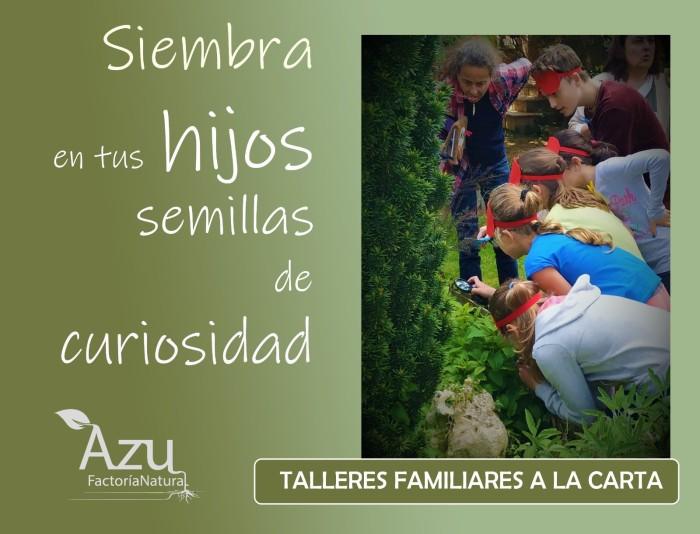 TALLERES FAMILIARES A LA CARTA CARTEL 1 EDU